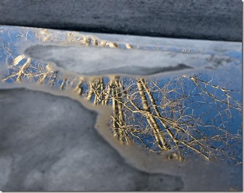 Garage reflection1