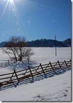 Spreing snow meadow