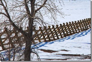 spring snow fence 2