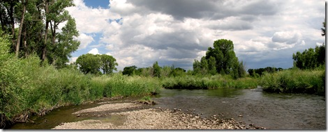 gunnison river web