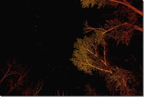 Gunnison Stars
