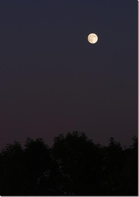 October Moon 2009