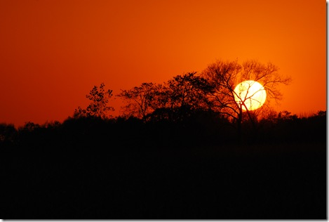 Sunset Grand Ledge