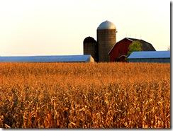 grand ledge farm2