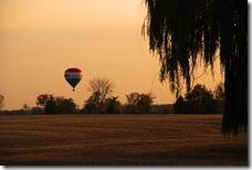 remax balloon in MI
