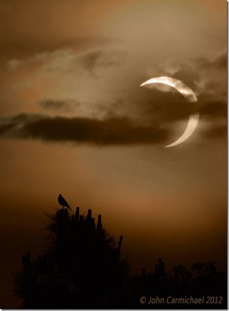 eclipse 3 copyright