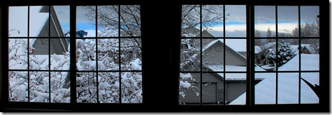 Tgiving snow