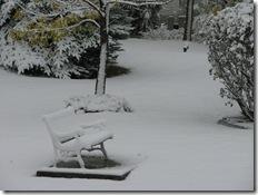 first snow2