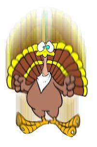 turkeydrop