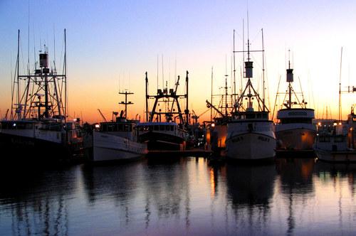 Fishing_fleet_at_sunset